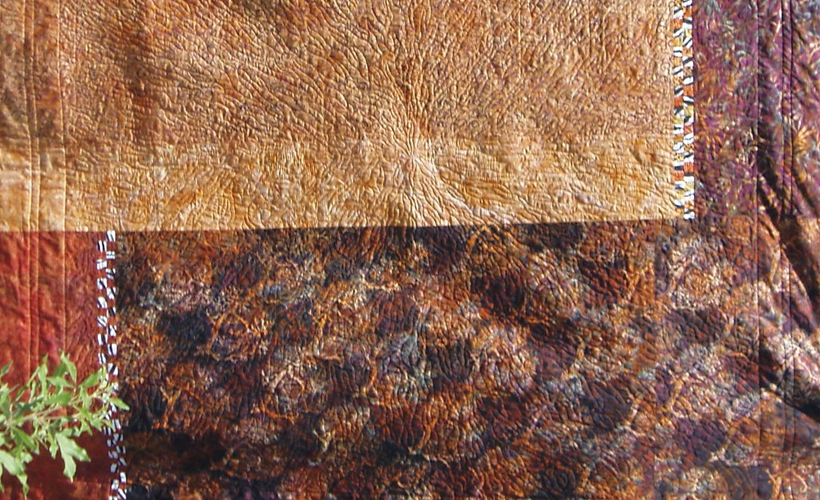 photo of Safari Batik Quilt Back- Learn how to design a spectacular batik quilt
